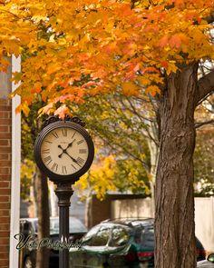Maple fall foliage surrounding clock in Salem MA