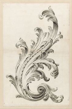 Acanthus leaves - Commonly associated with Corinthian architecture, most people in the US may recognize this style of plant from something we seen everyday...our currency is embroidered with them!