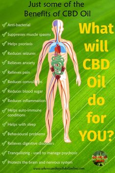 CBD is anti-bacterial, can relieve pain, can reduce seizures, can reduce inflammation and do a whole lot more. Could CBD Oil help you? Arthritis, Ayurveda, 100 Pour Cent, Endocannabinoid System, Oil Benefits, Health Benefits, Health Tips, Health Facts, Gut Health