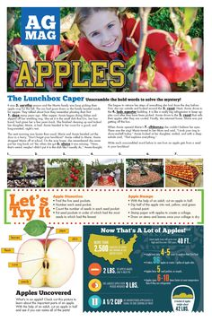 Apple Orchard Educator Guide by American Farm Bureau Foundation for Agriculture Recommended by the AFBFA