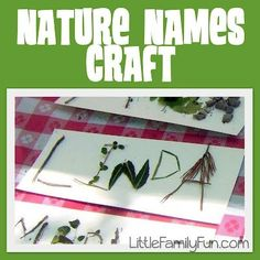 Nature craft for kids to show other ways to be creative with the things around them