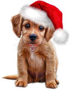 Christmas Puppy, Christmas Animals, Animal Drawings, Cute Drawings, Cute Baby Animals, Animals And Pets, Cute Dogs And Puppies, Christmas Scenes, Christmas Paintings
