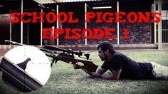 School Pigeons episode 1 - Daystate Wolverine