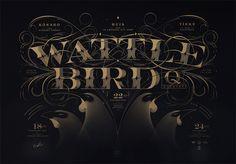 Wattlebird Quartet by Walter Hansen, via Behance