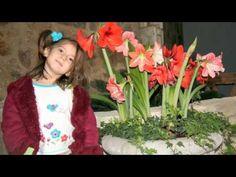 Le petit pont de bois.Yves Duteil - YouTube Yves Duteil, 7th Birthday, Portraits, Crown, Small Decks, Petite Fille, Music, Children, Woodwind Instrument
