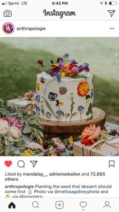 Gorgeous cake with edible flowers by Lori A Stern List Of Edible Flowers, Edible Flowers Cake, Wedding Cake Rustic, Wedding Cakes, Dad Cake, Fairy Birthday Party, Flower Food, Breakfast Cake, Gorgeous Cakes