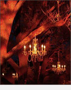 chandeliers in trees <3