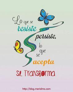 Con tesón y constancia se consigue!!! #blog.mariolmo.com