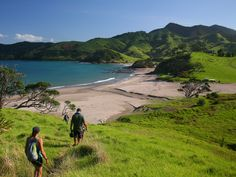 Hike along beautiful Elliot Bay on the Northland Discovery, New Zealand