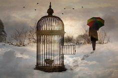 Break free from the cage that binds you, and unshaken, set out into the unknown to delight in the impossiblities that are most assuredly possible!