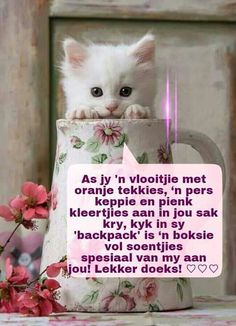 Lekke dudu Good Night Sleep Tight, Good Morning Good Night, Good Knight, Afrikaanse Quotes, Good Night Blessings, Goeie Nag, Good Night Quotes, Morning Greeting, Strong Quotes
