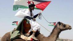 Western Sahara free