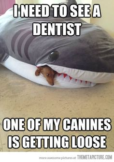 Must visit the dentist…