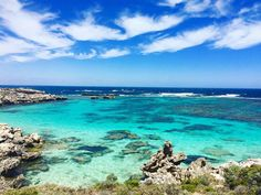 Another amazing shot of the beauty of Rottnest Island just off Perth. Blog link in Bio. Follow for more posts like this and inspiration for travelling. #rottnest #rottnestperth #rottnestisland #rottnestislandwa #travel #traveller #travelling #travelaustralia #travelgram #travelblog #australia #WA #westernaustralia #backpacker #travelplans #travelinspiration #sea #beach #bestbeaches by duffellsdelights http://ift.tt/1L5GqLp