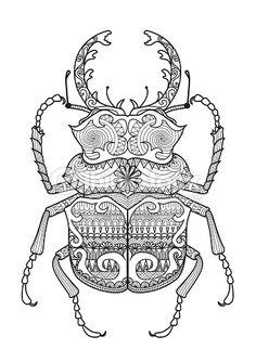 escarabajo vector - Buscar con Google