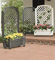Planter With Trellis And Self-Watering Reservoir, in Anth...