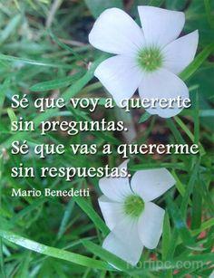 Sé que voy a quererte sin preguntas. Sé que vas a quererme sin respuestas. Mario Benedetti