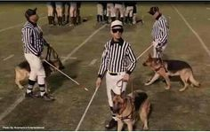 Can't forget those replacement referees, so bad...