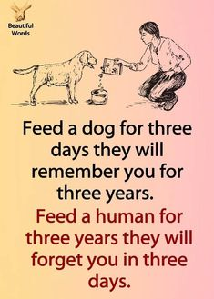Popular Dog Breeds, Best Dog Breeds, Poem Quotes, Poems, Beautiful Words, Life Is Beautiful, Happy Life Quotes, Quote Life, English Quotes
