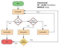 While Loop, Java