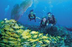 Snorkeling! #80Degrees