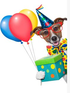 Birthday dog with balloons Cute Birthday Quotes, Birthday Verses For Cards, Happy Birthday Video, Birthday Wishes Quotes, Happy Birthday Messages, Happy Birthday Images, Happy Birthday Greetings, Birthday Pictures, Humor Birthday