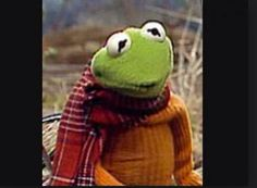 Kermit the Frog in a red scarf and orange sweater