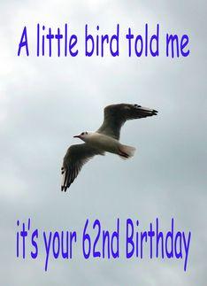Happy #62nd #Birthday Flying #Seagull #bird Greeting Card