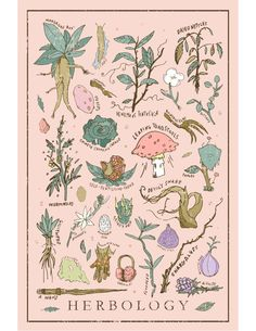 "illustrationcanspeak: ""Harry Potter Herbology Print / Poster - 12 x 18 Wall Art - Illustrated Hogwarts Class Print """