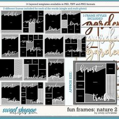 Cindy's Layered Templates - Fun Frames: Nature 2 by Cindy Schneider Frame Template, Layout Template, Drop Shadow, Multi Photo, Scrapbook Templates, Page Layout, Digital Scrapbooking, Cool Photos, Frames