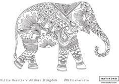 Ahora un elefante listo para ser coloreado.