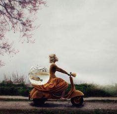 Indrukwekkende foto's van de winnaars van de Sony World Photography Awards Roomed | roomed.nl