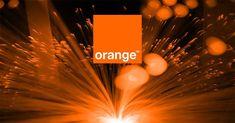 Neon Signs, Orange, Digital, Fiber, Gift, Military Deployment, Beetle, Future Tense