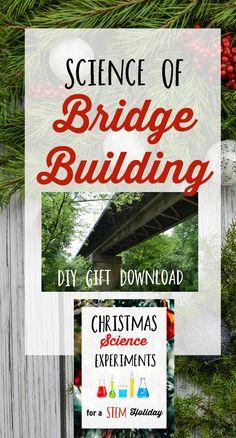 Bridge building STEM Challegen