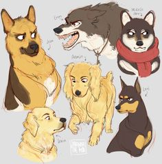 Irwin (Golden Retriever), Jean (German Shepherd), Eren (Wolf), Armin (Cocker Spaniel), Levi (Miniature Pinscher), Mikasa (Shiba Inu)>>>> dog Jean's face!! :)