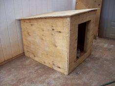 Una hoja (4 'x 8') casa de perro de madera contrachapada - Resha Equipo de perro de trineo
