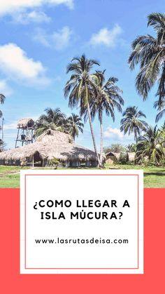 Una guía que te explicará como llegar a una de las islas mas bonitas de COLOMBIA Ecuador, Travel Tips, Places To Go, Lettering, City, Nature, Tasmania, Costa Rica, Trips