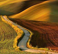 Křivky jižní Moravy :: Marek Svoboda