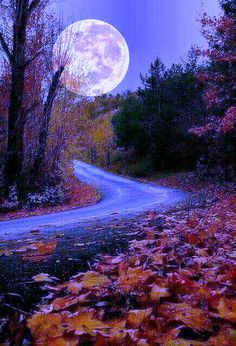 Don & # t try to be a perfect for a person better wait for someone to arrive a Moon Photos, Moon Pictures, Nature Pictures, Beautiful Moon, Beautiful World, Beautiful Places, Beautiful Pictures, Moon Photography, Landscape Photography