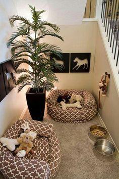 Puppy cute, now that's a setup!!
