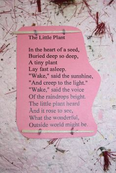 The Educators Spin On It: Are you willing to wake the seeds of change? Waldorf Education, Childhood Education, Physical Education, Early Education, Waldorf Kindergarten, Waldorf Preschool, Waldorf Math, Steiner Waldorf, Teaching Kindergarten
