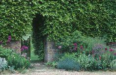 Mixed perennial border for walled garden, opening in garden wall to pleasure garden, gravel, plants, Caroline Arber Photography