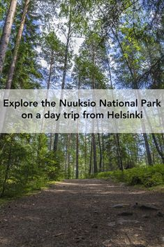 Taking a day trip from Helsinki to the Nuuksio National Park is a great way to relax and get in touch with nature. Would you like to find out why? #nuuksio #noux #finland #nationalpark