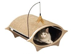 I pinned this Cat Eye Cat Bed & Scratcher from the Four-Legged Finds event at Joss and Main! Crazy Cat Lady, Crazy Cats, Heated Cat Bed, Cat Cave, Cat Dog, Pet Furniture, Creature Comforts, Cool Pets, Pet Beds