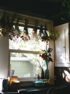 My kitchen window looks a bit like this - no curtains, just herbs hanging.