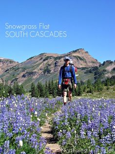 HIKE: Snowgrass Flat in the South Cascades, Washington State