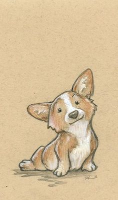 corgi drawing