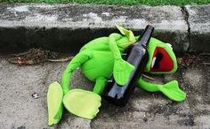 kermit is drunk again Funny Kermit Memes, Cute Memes, Miss Piggy, Sapo Kermit, Sapo Meme, Bd Comics, Winter Chic, Kermit The Frog, Memes Br