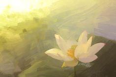 Lotus Flower Paintings - Image Based - Akvis Oil Paint Fil… | Flickr Flower Painting Images, Oil Painting Flowers, Flower Paintings, Paint Filter, Filters, Lotus Flowers, Flower Oil, Art, Paintings Of Flowers