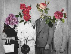 flowers heads